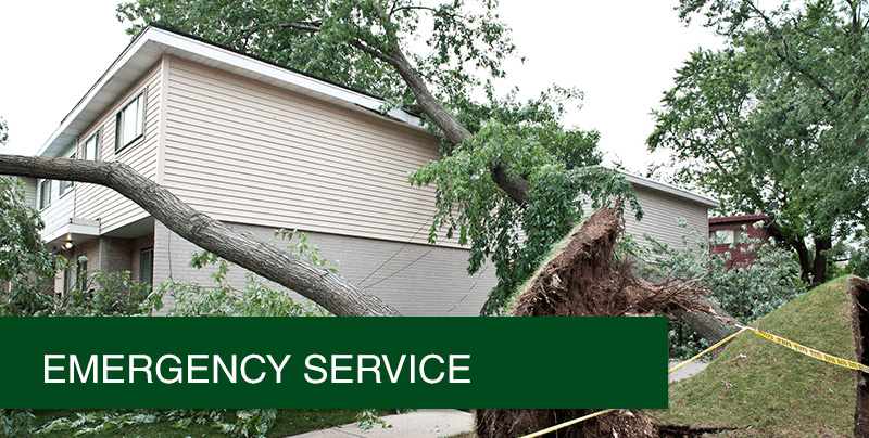 Emergency Roof Repair Lowry Roofing Company Frisco Tx